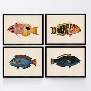 Nacnic Set de 4 láminas con pez Colorido Efecto Vintage Tono Azul, Amarillo. Taliabu. Composicion de 4 Peces Diferentes en tamaño A4, Fondo Papel Vintage Poster Papel 250 gr Marco