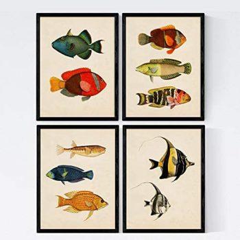 Nacnic Set de 4 láminas de Peces Coloridos Efecto Vintage. Baleares. Composicion de 10 Peces Diferentes en tamaño A4, Fondo Papel Antiguo Vintage. Sin Marco.