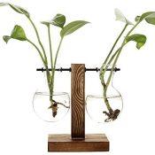 belupai Floreros hidropónicos vintage florero transparente marco de madera de vidrio, plantas de mesa, bonsái, decoración del hogar (C - 2 bombillas)